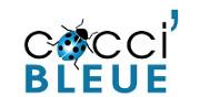 CocciBleue
